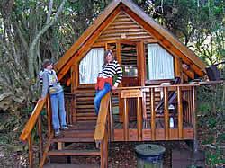 tsitsikamma park afrika